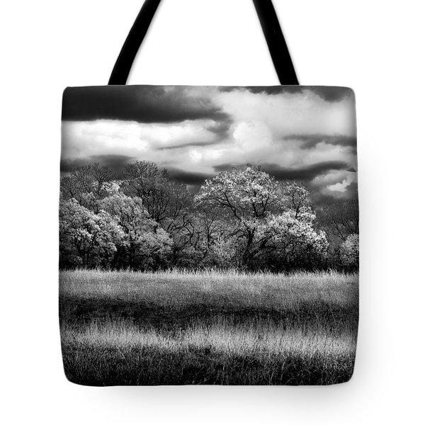 Black And White Trees Tote Bag