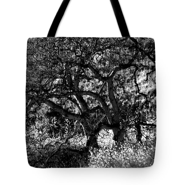 Black And White Trees Tote Bag