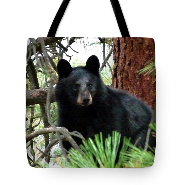 Black Bear 1 Tote Bag