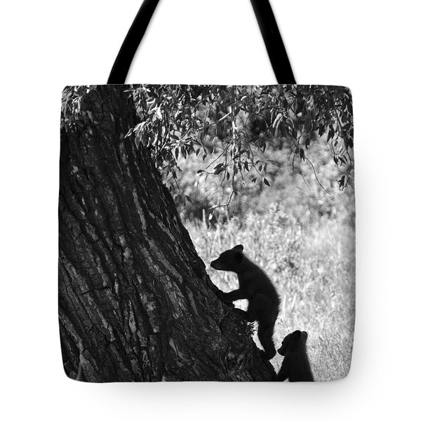 Black Bear Cubs Climbing A Tree Tote Bag by Crystal Wightman