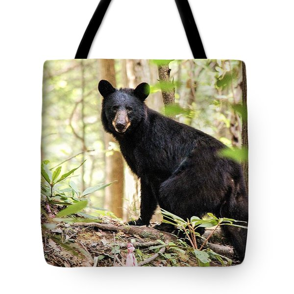 Black Bear Smile Tote Bag