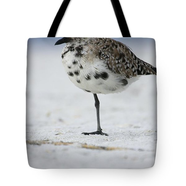 Black-bellied Plover Tote Bag