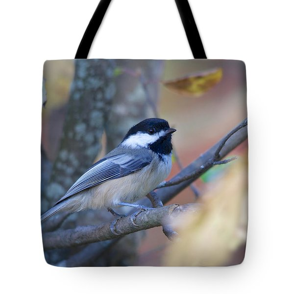 Tote Bag featuring the photograph Black-capped Chickadee by Nature and Wildlife Photography