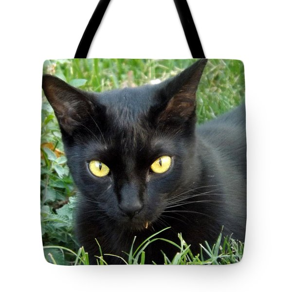 Black Cat Tote Bag by Lingfai Leung