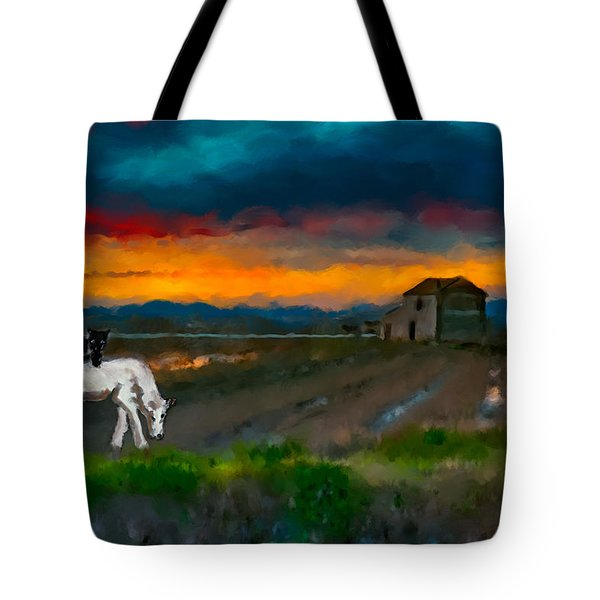 Tote Bag featuring the photograph Black Cat On A White Horse by Juan Carlos Ferro Duque