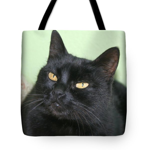 Black Cat Tote Bag by Tracey Harrington-Simpson