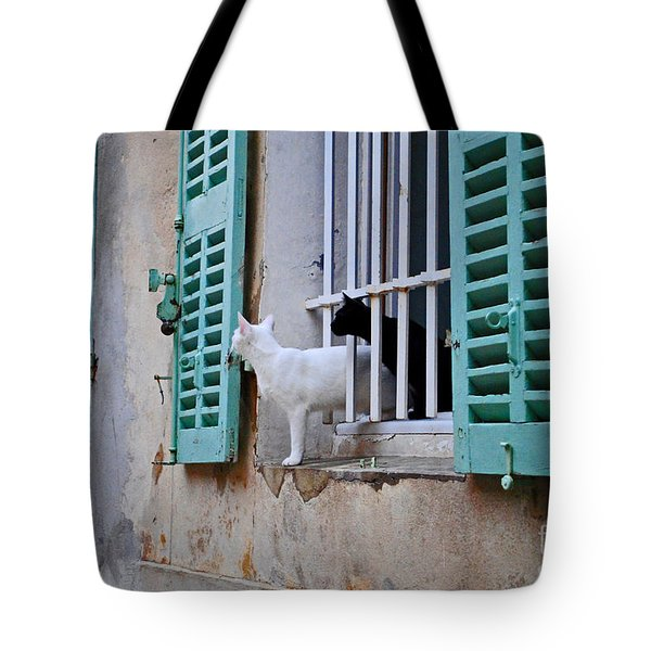 Tote Bag featuring the photograph Black Cat White Cat by Maja Sokolowska
