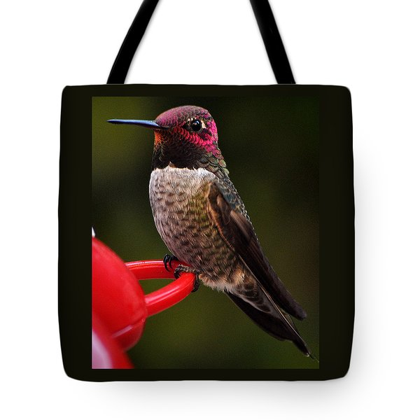 Tote Bag featuring the photograph Black Chinned Male Hummingbird by Jay Milo