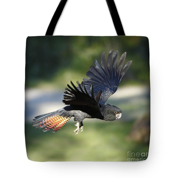 Black Cockatoo Tote Bag