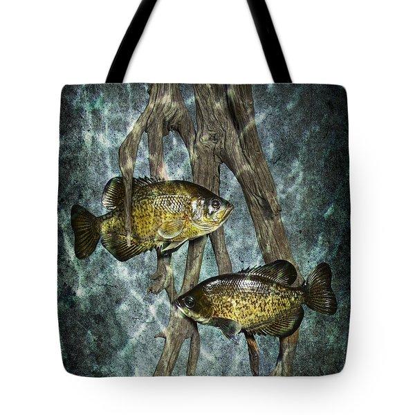 Black Crappies A Fish Image No 0143 Blue Version Tote Bag