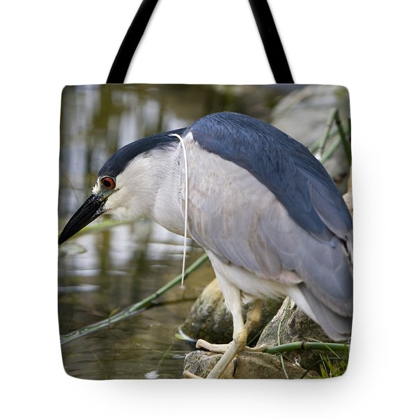 Tote Bag featuring the photograph Black-crown Heron Going Fishing by David Millenheft