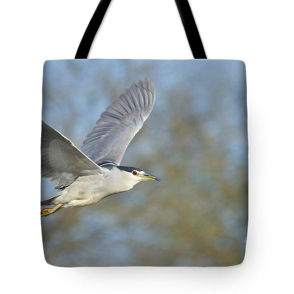 Black- Crowned Night Heron Tote Bag by Bryan Keil