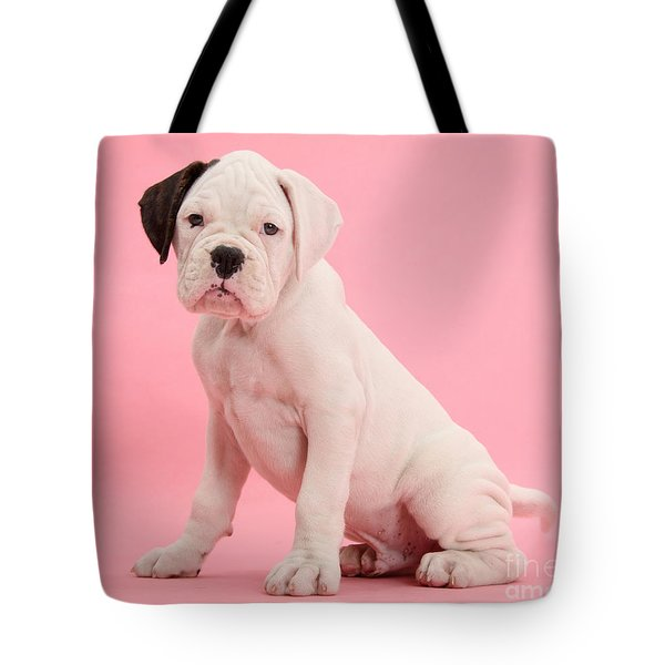 Black Eared White Boxer Puppy Tote Bag by Mark Taylor