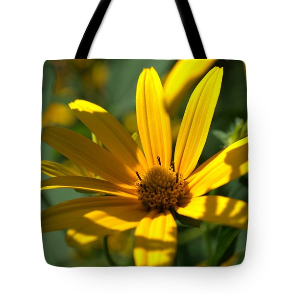 Tote Bag featuring the photograph Black Eyed Susan by Cathy Shiflett