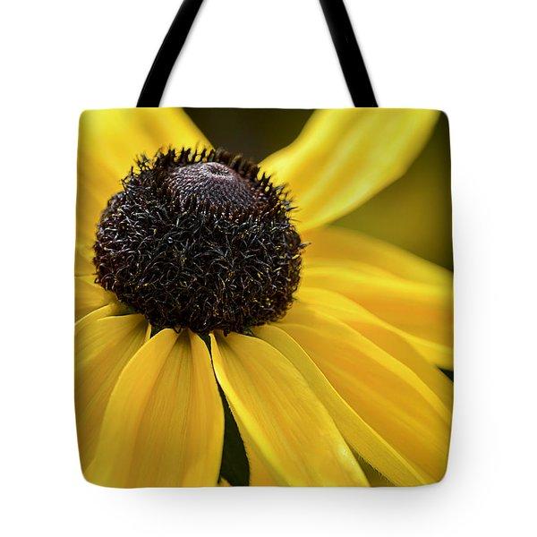 Black Eyed Susan Tote Bag by Julie Palencia
