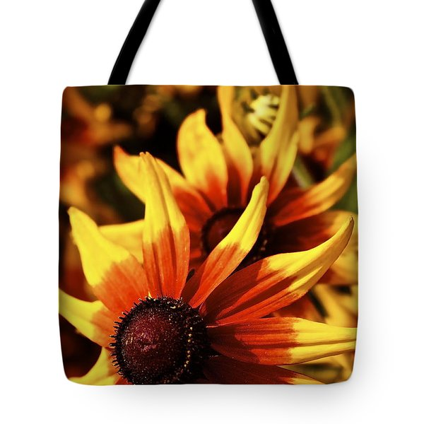 Tote Bag featuring the photograph Black Eyed Susan by Linda Bianic