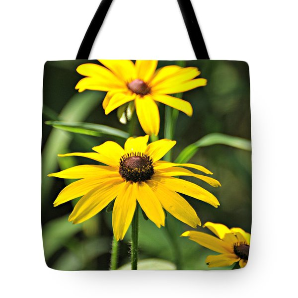 Black Eyed Susan Tote Bag by Marty Koch