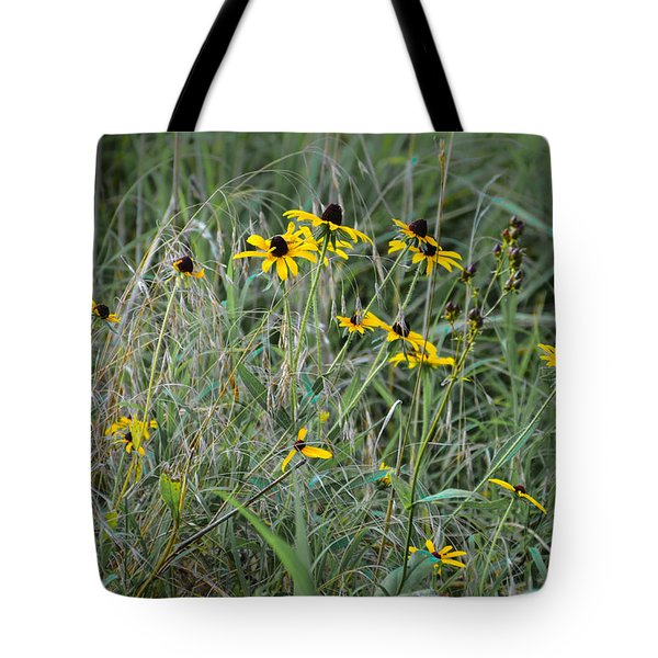Black Eyed Susans At Antietam Maryland Tote Bag