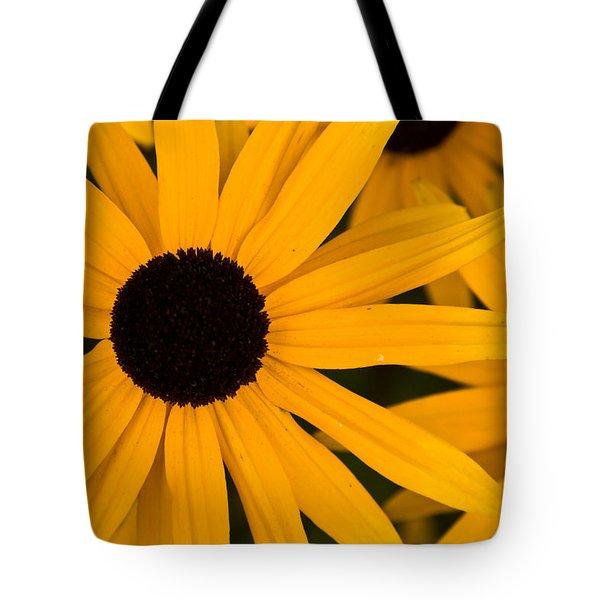 Black Eyed Susans Tote Bag by Brent L Ander