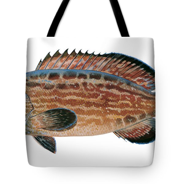 Black Grouper Tote Bag by Carey Chen