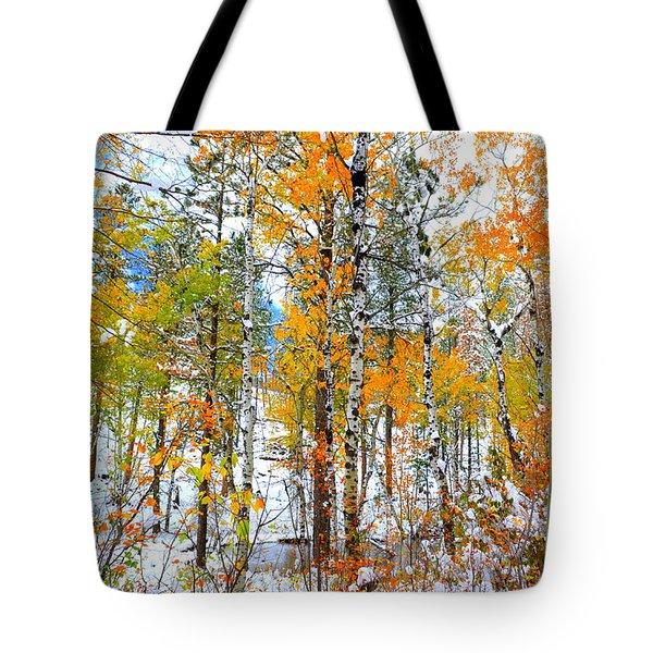 Black Hills Veil  Tote Bag by Clarice  Lakota
