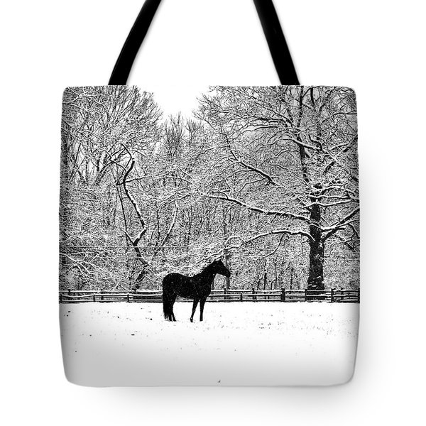 Black Horse In The Snow Tote Bag by Bill Cannon
