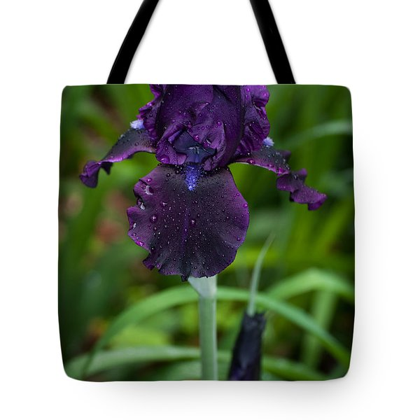 Tote Bag featuring the photograph Black Iris by Penny Lisowski