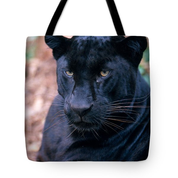 Black Leopard Tote Bag by Mark Newman