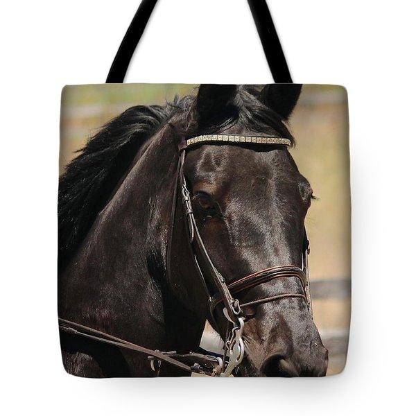 Black Mare Portrait Tote Bag