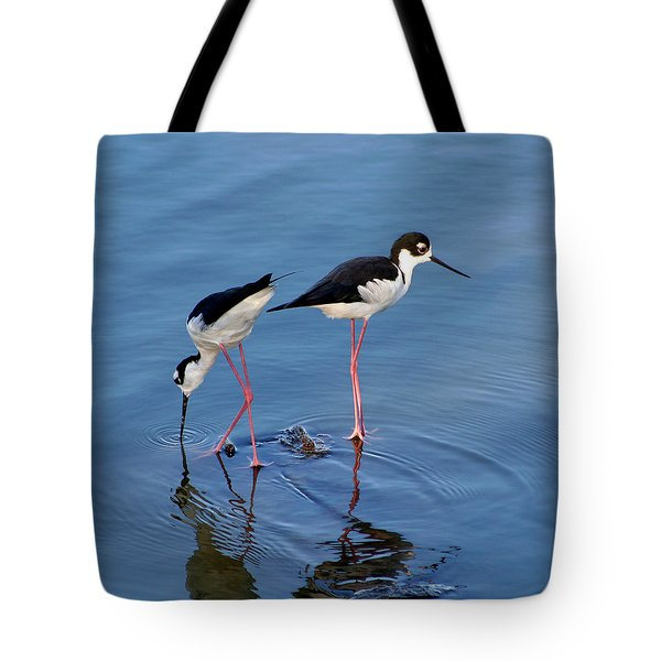 Tote Bag featuring the photograph Black-necked Stilts by Bob and Jan Shriner
