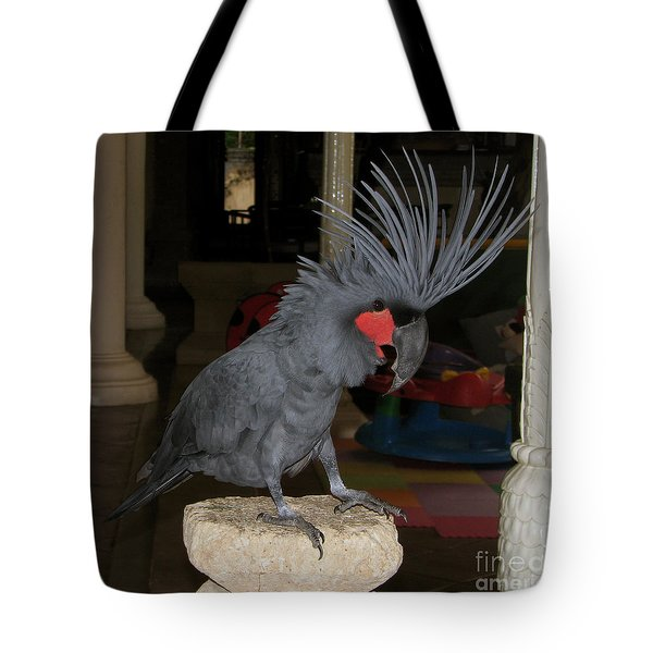 Tote Bag featuring the photograph Black Palm Cockatoo by Sergey Lukashin