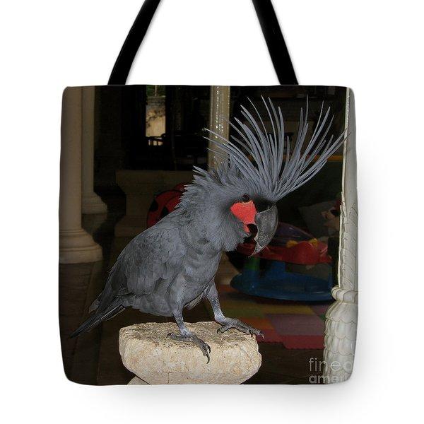 Black Palm Cockatoo Tote Bag by Sergey Lukashin