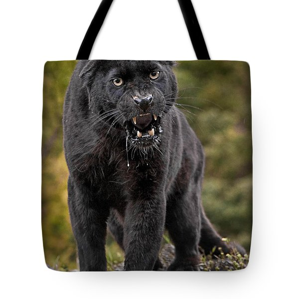 Black Panther Tote Bag by Jerry Fornarotto