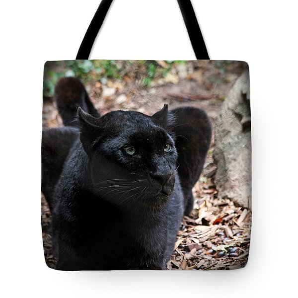 Black Panther Tote Bag by Judy Vincent