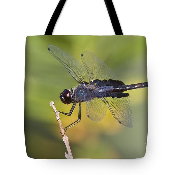 Tote Bag featuring the photograph Black Saddlebags by Bryan Keil