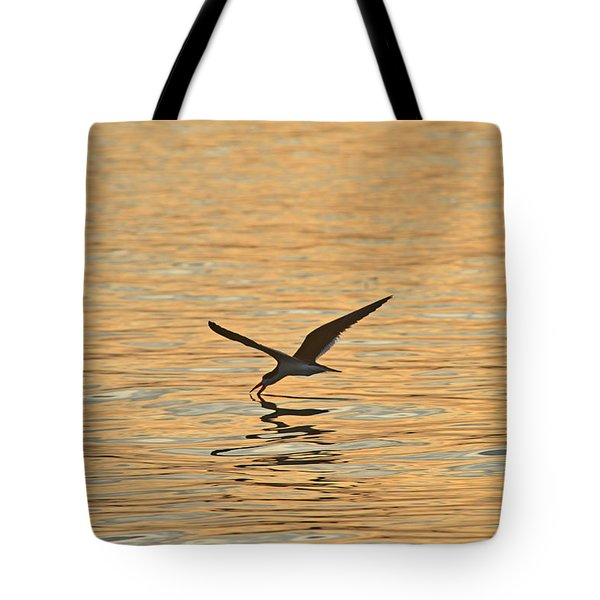 Tote Bag featuring the photograph Black Skimmer by Dana Sohr