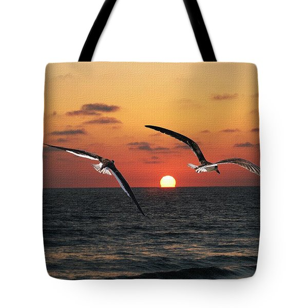 Tote Bag featuring the photograph Black Skimmers At Sunset by Tom Janca