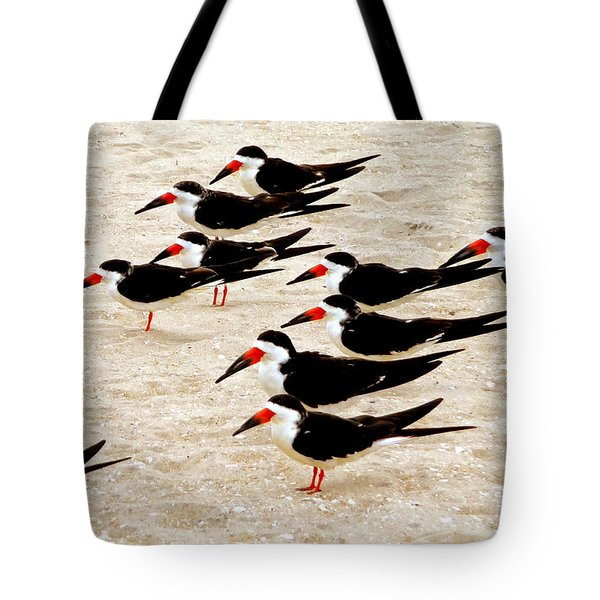 Tote Bag featuring the photograph Black Skimmers On The Beach by Jim Whalen