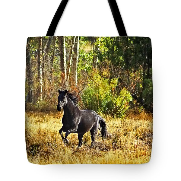 Black Stallion Runs Free Tote Bag