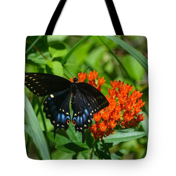 Black Swallow Tail On Beautiful Orange Wildlflower Tote Bag by Peggy Franz