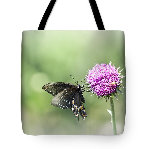 Black Swallowtail Dreaming Tote Bag