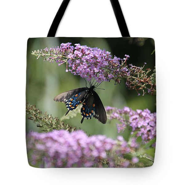 Black Swallowtail1-featured In Newbies-nature Wildlife- Digital Veil-comfortable Art Groups Groups Tote Bag by EricaMaxine  Price