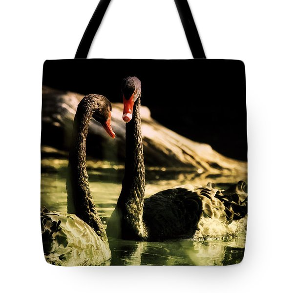 Black Swan Tote Bag by Diane Dugas
