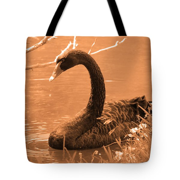 Tote Bag featuring the photograph Black Swan by Leticia Latocki