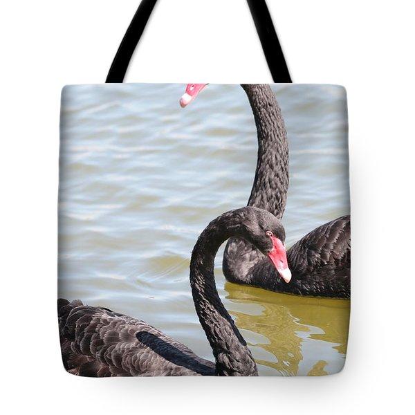 Black Swan Pair Tote Bag by Carol Groenen