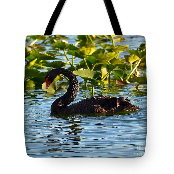 Black Swan Swimming Tote Bag by Carol  Bradley