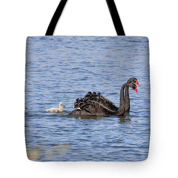 Black Swans Tote Bag