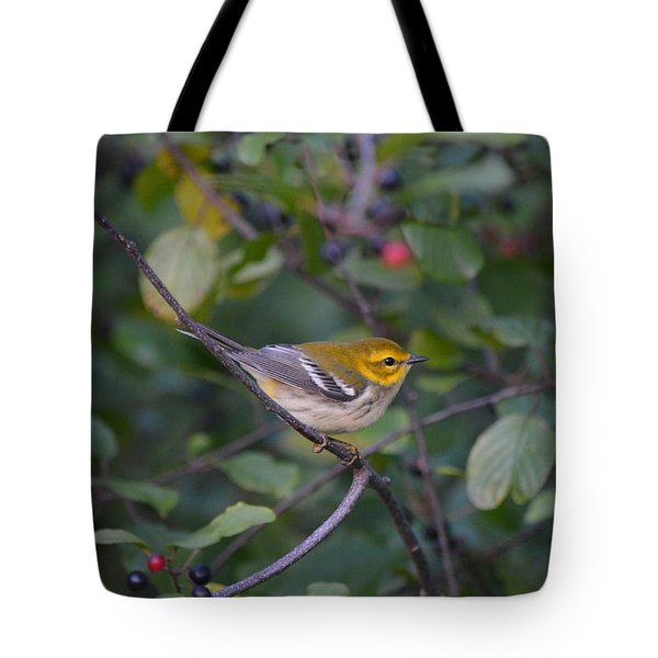 Tote Bag featuring the photograph Black-throated Green Warbler by James Petersen