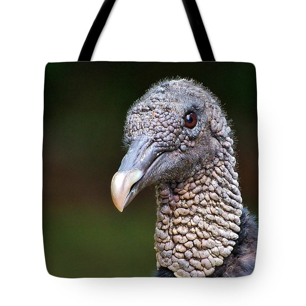 Tote Bag featuring the photograph Black Vulture by Ludwig Keck
