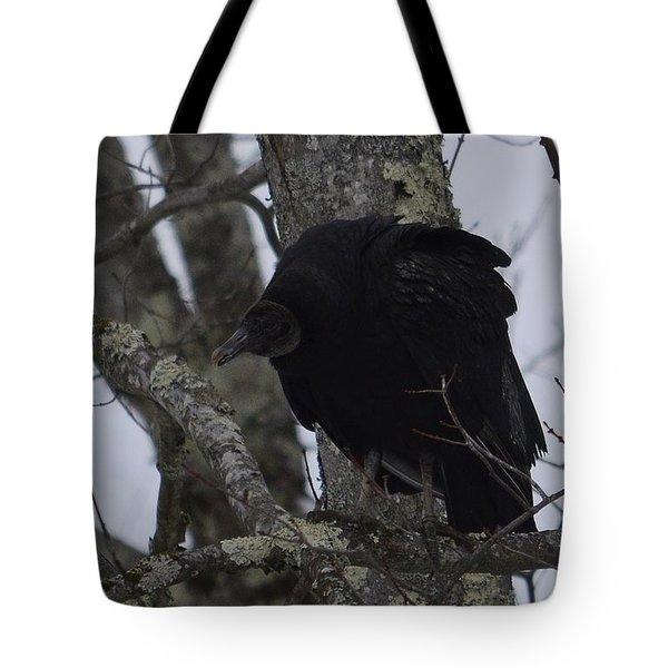 Black Vulture Tote Bag by Randy Bodkins